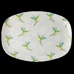 Rice plate hummingbird